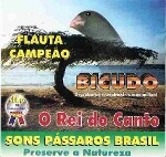 Foto Cd O Canto Do Bicudo Flauta Campeão. Original...